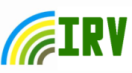 File:Irv1.png