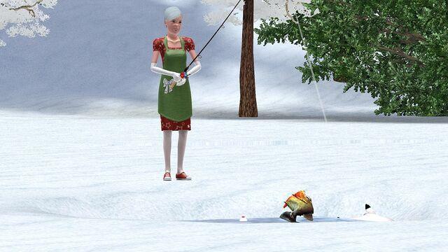 File:WinterWonder1.jpg