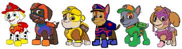 PAW Patrol Rainbowix Form