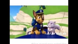I won't let you down Paw Patrol MV (by Ava)