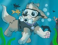Diving around