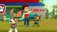 PAW Patrol 315 Scene 56 Ryder, Chase, Rubble and Tracker