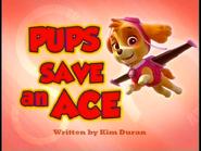 Pups Save an Ace SD