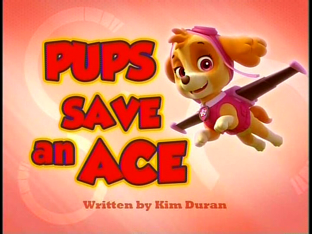 File:Pups Save an Ace SD.png