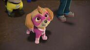 PAW Patrol Pups Save Apollo Scene 15