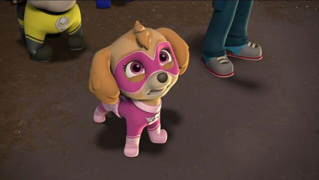 File:PAW Patrol Pups Save Apollo Scene 15.jpg