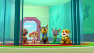 PAW Patrol Pups Save Sports Day Scene 10