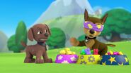 PAW.Patrol.S01E21.Pups.Save.the.Easter.Egg.Hunt.720p.WEBRip.x264.AAC 66400