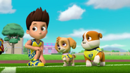 Pups Soccer 35