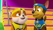 PAW Patrol Pups Save Sports Day Scene 6