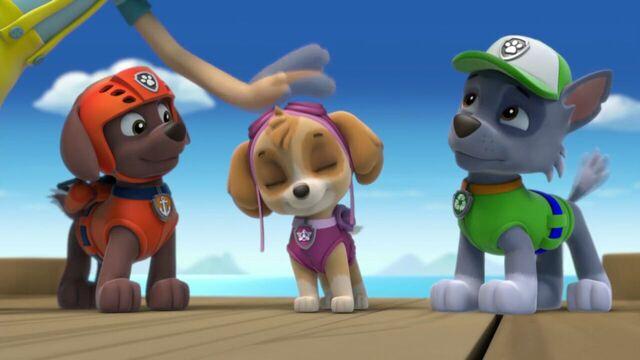File:PAW.Patrol.S01E15.Pups.Make.a.Splash.-.Pups.Fall.Festival.720p.WEBRip.x264.AAC 641474.jpg