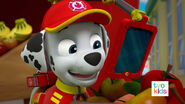 PAW Patrol Pups Save the Critters Marshall 1