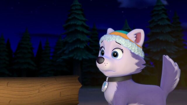 File:PAW.Patrol.S02E07.The.New.Pup.720p.WEBRip.x264.AAC 1344109.jpg