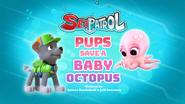 Sea Patrol Pups Save a Baby Octopus (HQ)