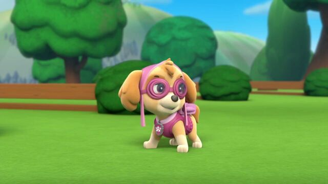 File:PAW.Patrol.S01E21.Pups.Save.the.Easter.Egg.Hunt.720p.WEBRip.x264.AAC 80213.jpg