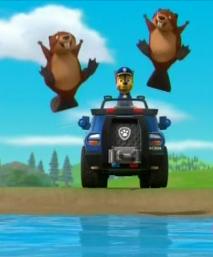 File:Beaver 14.PNG