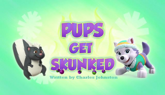 File:Pups Get Skunked (HQ).png