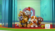 PAW Patrol Pups Save the Critters 11