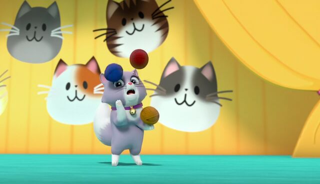 File:The Cat Show 35.jpg