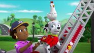 PAW Patrol Pups Save the Songbirds Scene 41