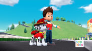 PAW Patrol Pups Save the Critters 16