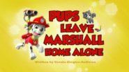 Pups Leave Marshall Home Alone (HD)