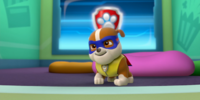 Pups Save a Super Pup/Trivia