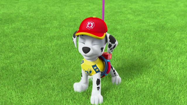 File:Pups Soccer 55.png