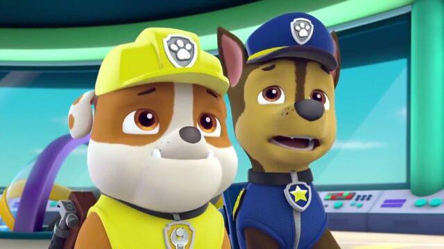 File:PAW Patrol Season 2 Episode 10 Pups Save a Talent Show - Pups Save the Corn Roast 407741.jpg
