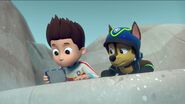 PAW Patrol Pups Save the Songbirds Scene 31