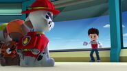PAW.Patrol.S01E15.Pups.Make.a.Splash.-.Pups.Fall.Festival.720p.WEBRip.x264.AAC 236002
