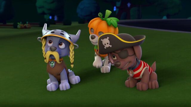 File:PAW.Patrol.S01E12.Pups.and.the.Ghost.Pirate.720p.WEBRip.x264.AAC 1342908.jpg