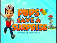 Pups Save a Surprise (SD)