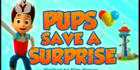 Pups Save a Surprise/Images