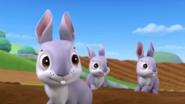 Bunnies (Bunnies)5