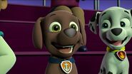 PAW Patrol Pups Save the Hippos Scene 46