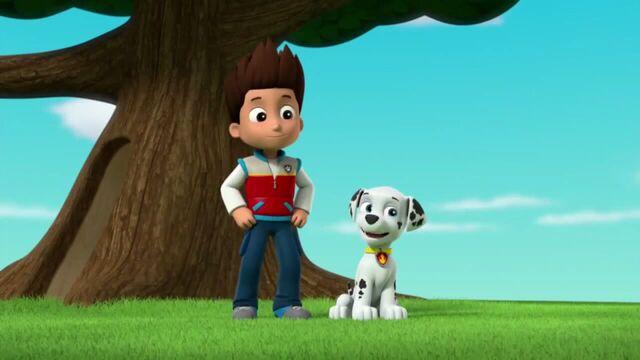 File:PAW Patrol Season 2 Episode 10 Pups Save a Talent Show - Pups Save the Corn Roast 264498.jpg