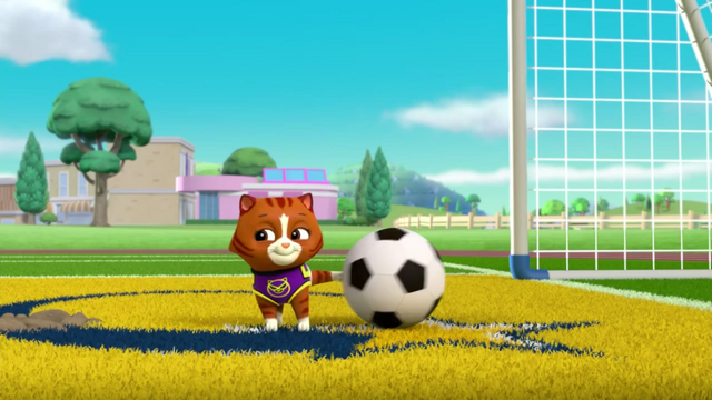 File:Pups Soccer 34.png