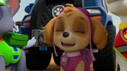PAW.Patrol.S02E07.The.New.Pup.720p.WEBRip.x264.AAC 100367