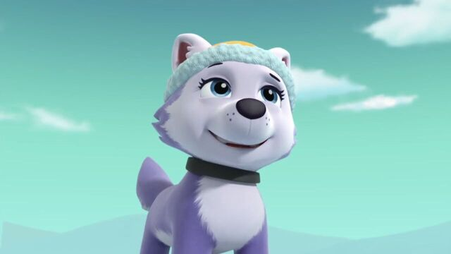 File:PAW.Patrol.S02E07.The.New.Pup.720p.WEBRip.x264.AAC 1002335.jpg