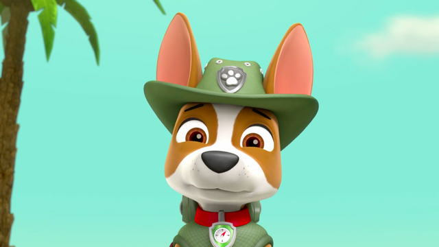 File:PAW Patrol 315 Scene 94 Tracker.png