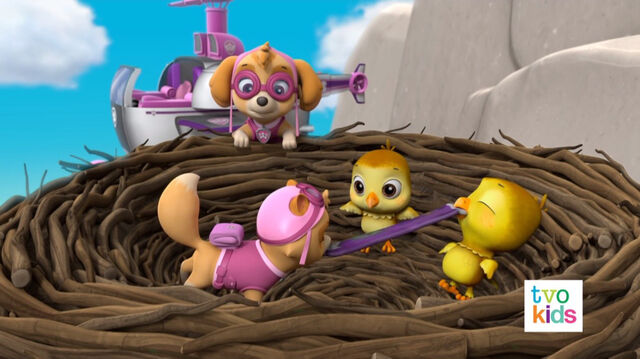 File:PAW Patrol Pups Save a Flying Kitty 33.jpg