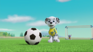PAW Patrol Pups Save the Soccer Game Scene 2