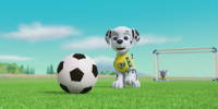 Pups Save the Soccer Game/Images