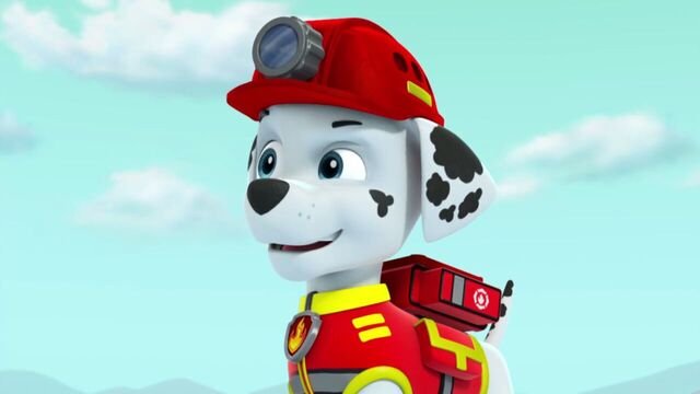 File:PAW.Patrol.S02E07.The.New.Pup.720p.WEBRip.x264.AAC 787353.jpg
