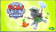 PPAcademy5