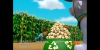 Rocky/Gallery/Pups Save the Corn Roast