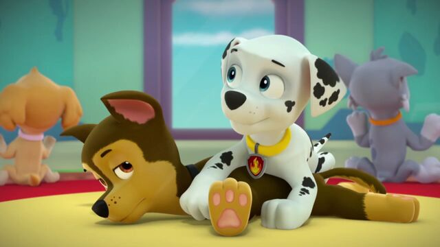 File:PAW.Patrol.S02E02.Pups.Save.the.Penguins.-.Pups.Save.a.Dolphin.Pup.720p.WEBRip.x264.AAC.mp4 000165298.jpg
