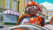 PAW Patrol Pups Save the Hippos Scene 27