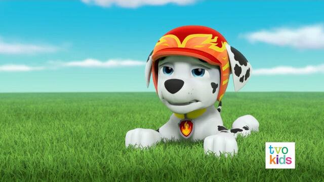 File:PAW Patrol Pups Save a Satellite Scene 13.jpg